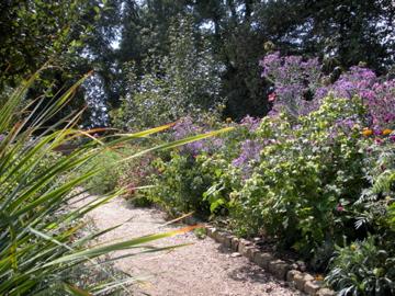 Mrs. Washington's garden